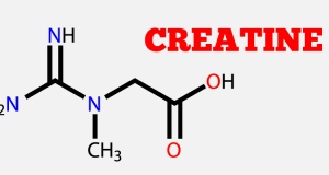 Creatine 101 – The Facts About Creatine