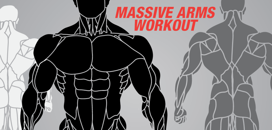 The Mive Arms Workout Plan