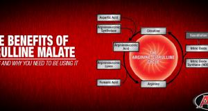 Benefits of Citrulline Malate