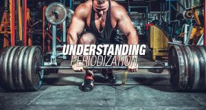Understanding Periodization